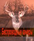 Беспроводные фотовидеокамеры и автономные фоторегистраторы для охотников и любителей живой природы в Оружейном салоне АРСЕНАЛ